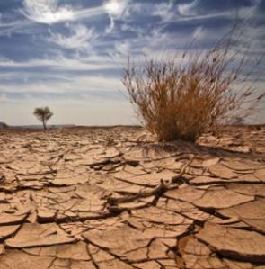 Vremea si climatul. Erori de intelegere si predictii pentru viitor